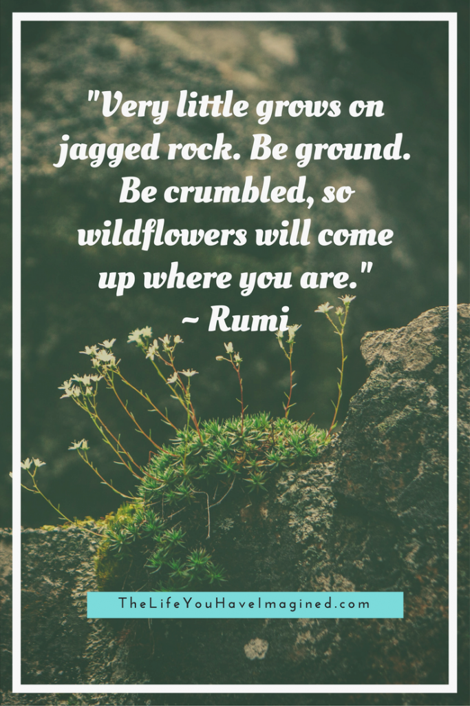 """Very little grows on jagged rock. Be ground. Be crumbled, so wildflowers will come up where you are."" Rumi - Wise Words of a 13th Century Poet - from The Life You Have Imagined"